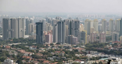 smaller-homes,-shorter-lease-units:-how-singapore's-housing-landscape-might-change-amid-population-shifts-–-cna