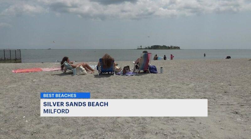where-does-silver-sands-rank-on-news-12-connecticut's-best-beaches-list?-–-news-12-bronx