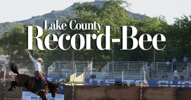 the-versatile-power-of-attorney-–-lake-county-record-bee