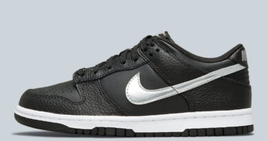 """the-nba's-75th-anniversary-collection-to-include-a-""""black/silver""""-nike-dunk-low-–-sneaker-news"""