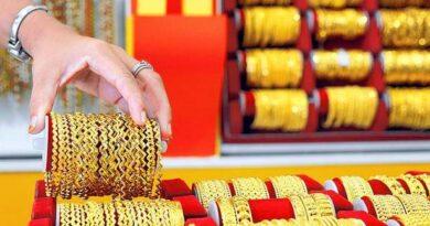 gold-standard-–-businessline